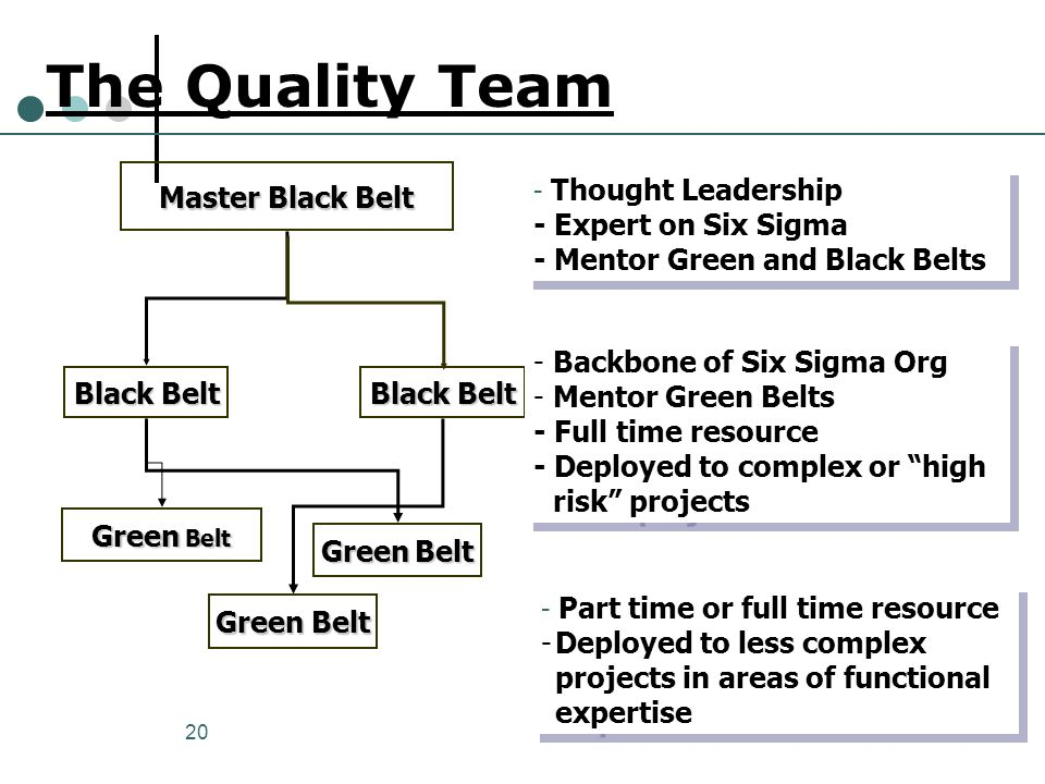 The Quality Team Master Black Belt - Expert on Six Sigma