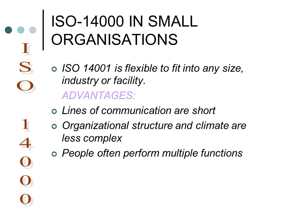 ISO IN SMALL ORGANISATIONS