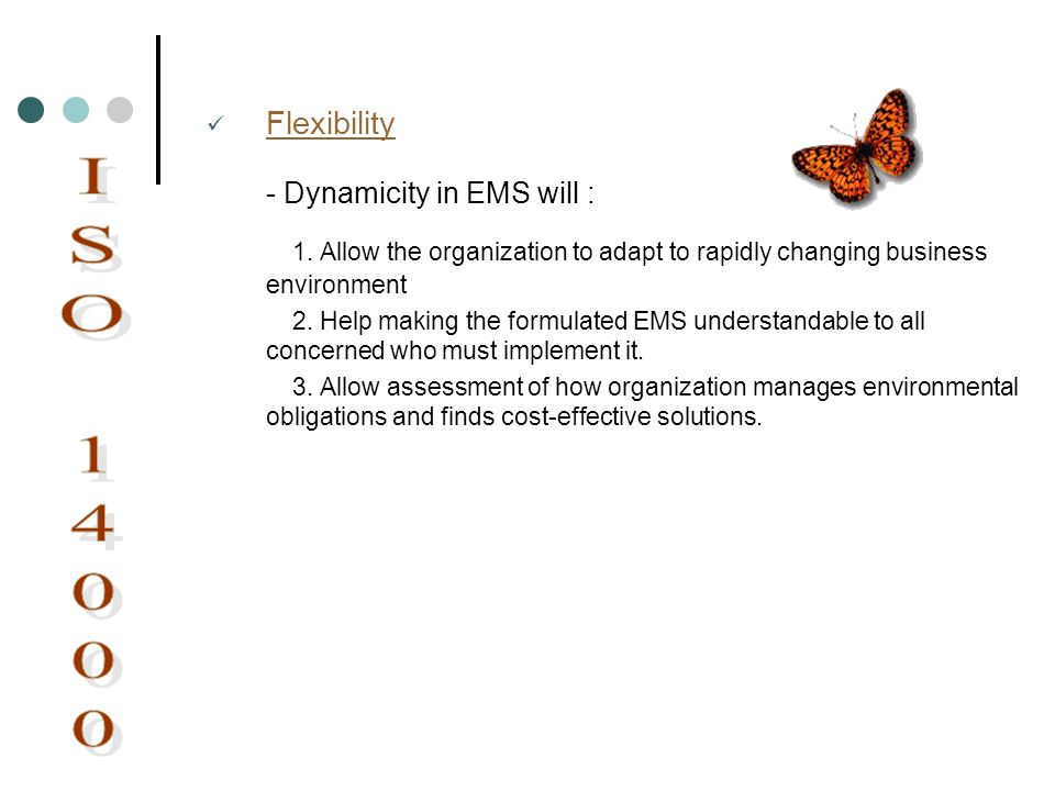 ISO Dynamicity in EMS will :