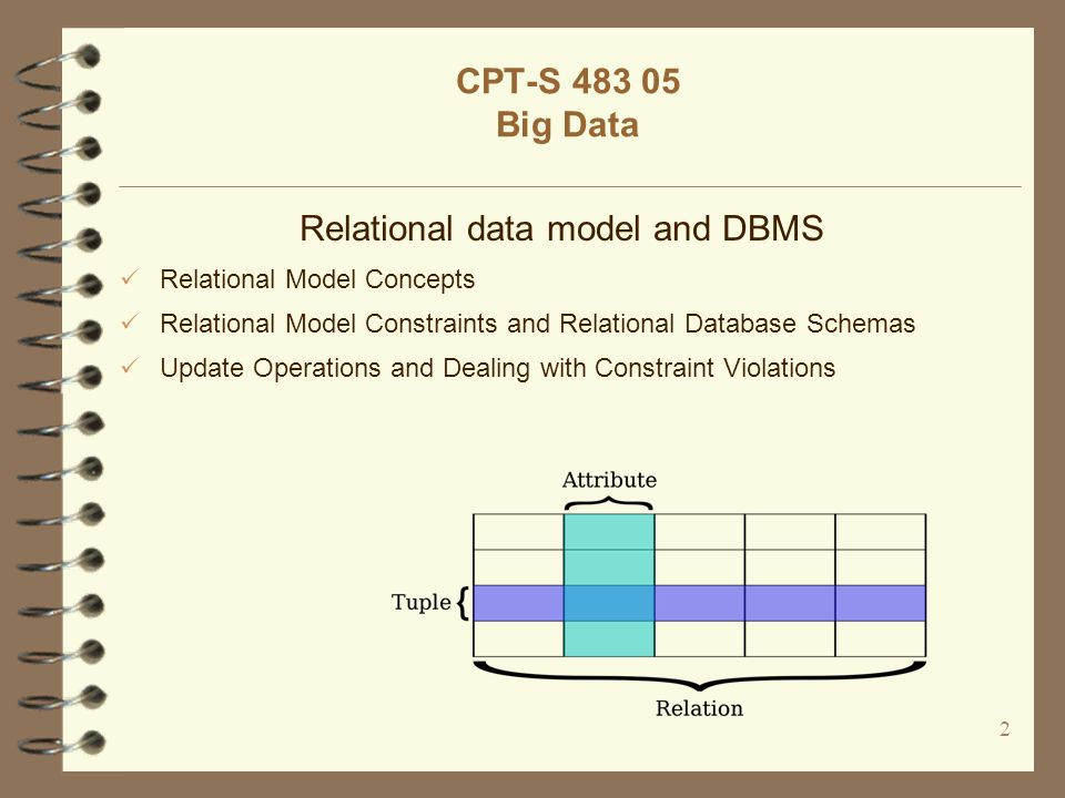 Relational data model and DBMS