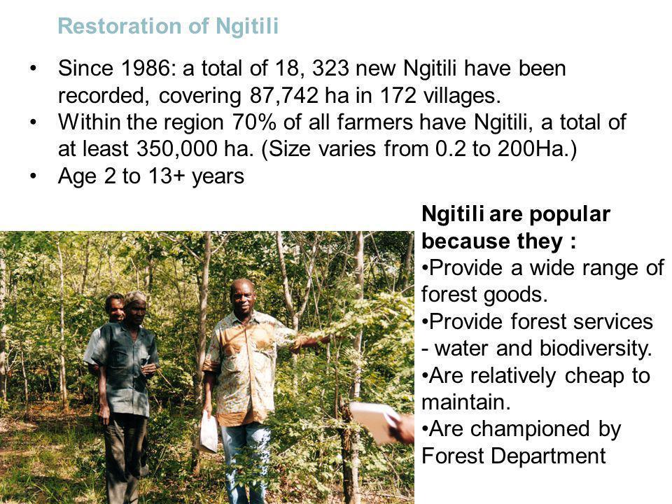 Restoration of Ngitili