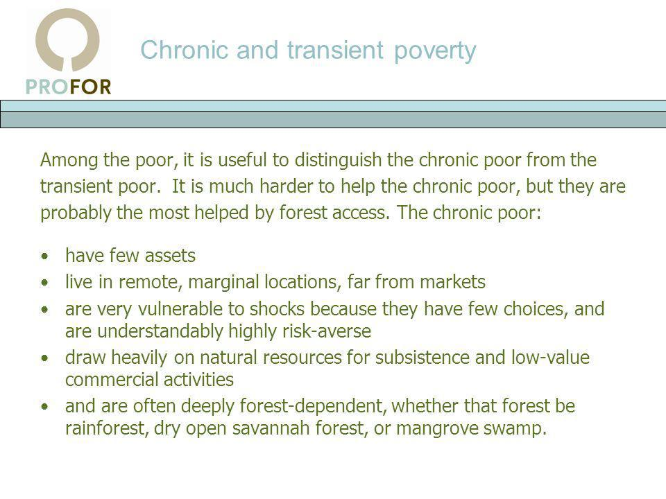 Chronic and transient poverty