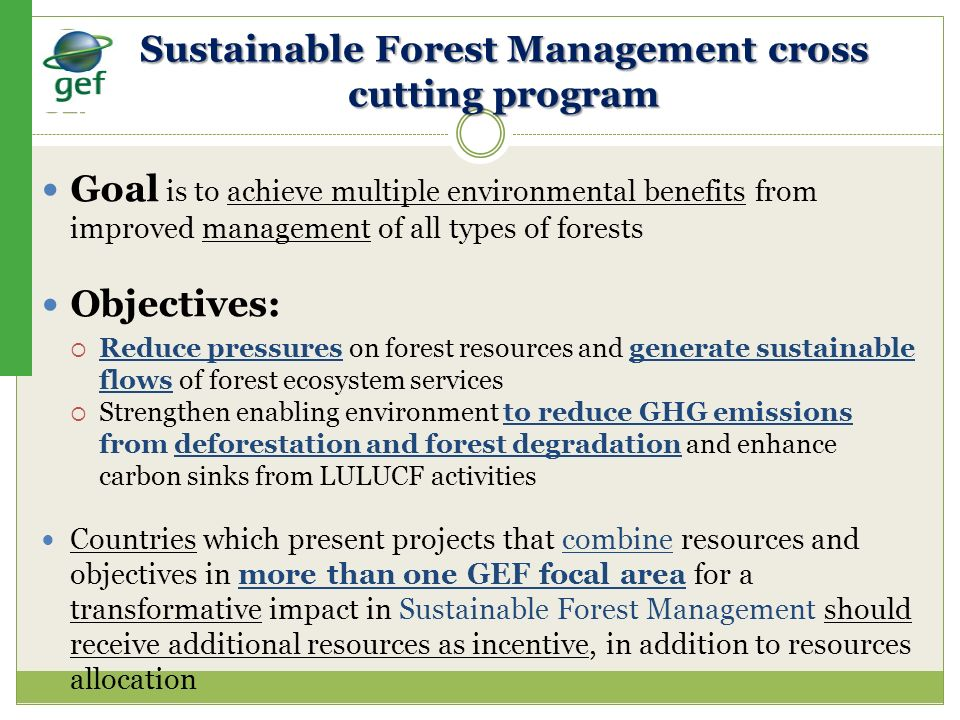 Sustainable Forest Management cross cutting program