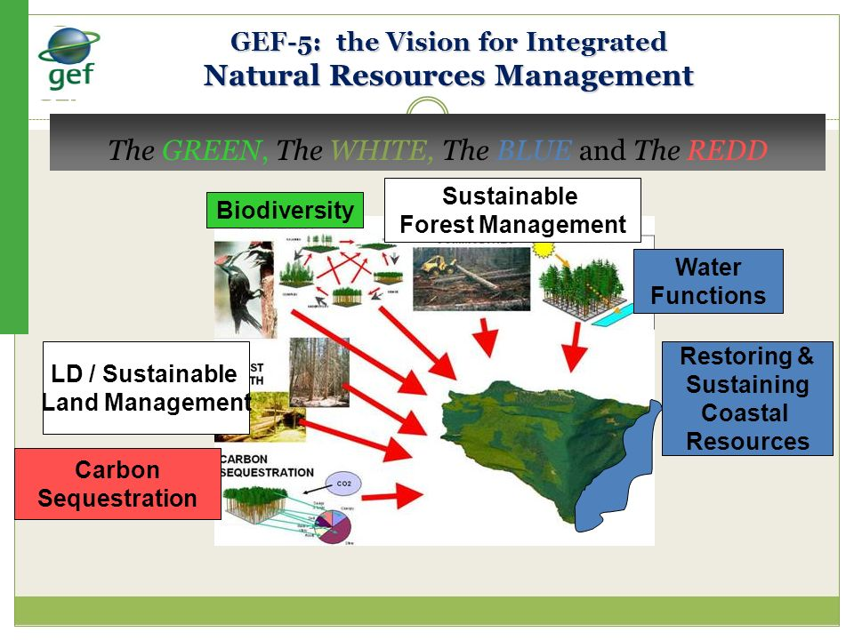 GEF-5: the Vision for Integrated Natural Resources Management