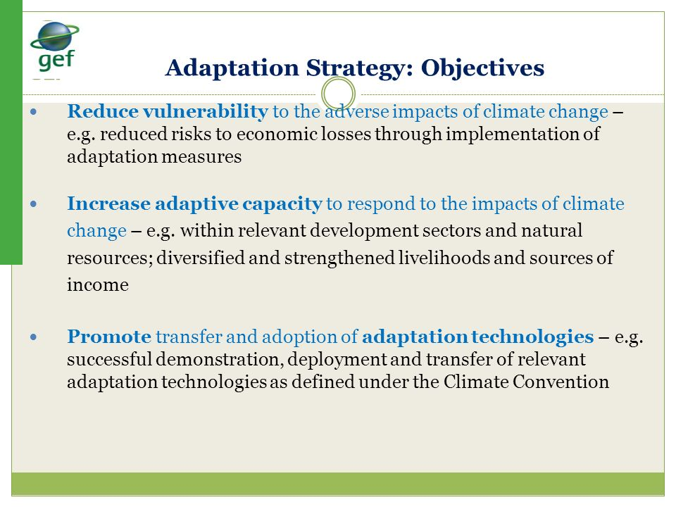 Adaptation Strategy: Objectives