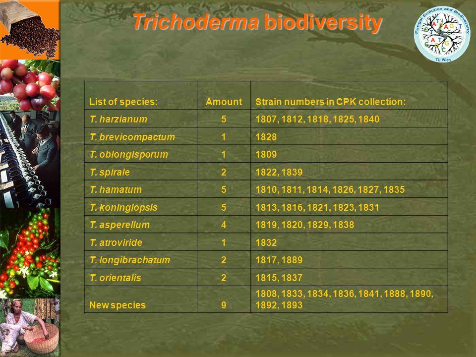 Trichoderma biodiversity