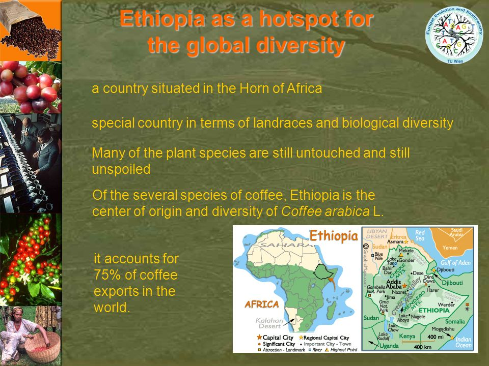 Ethiopia as a hotspot for