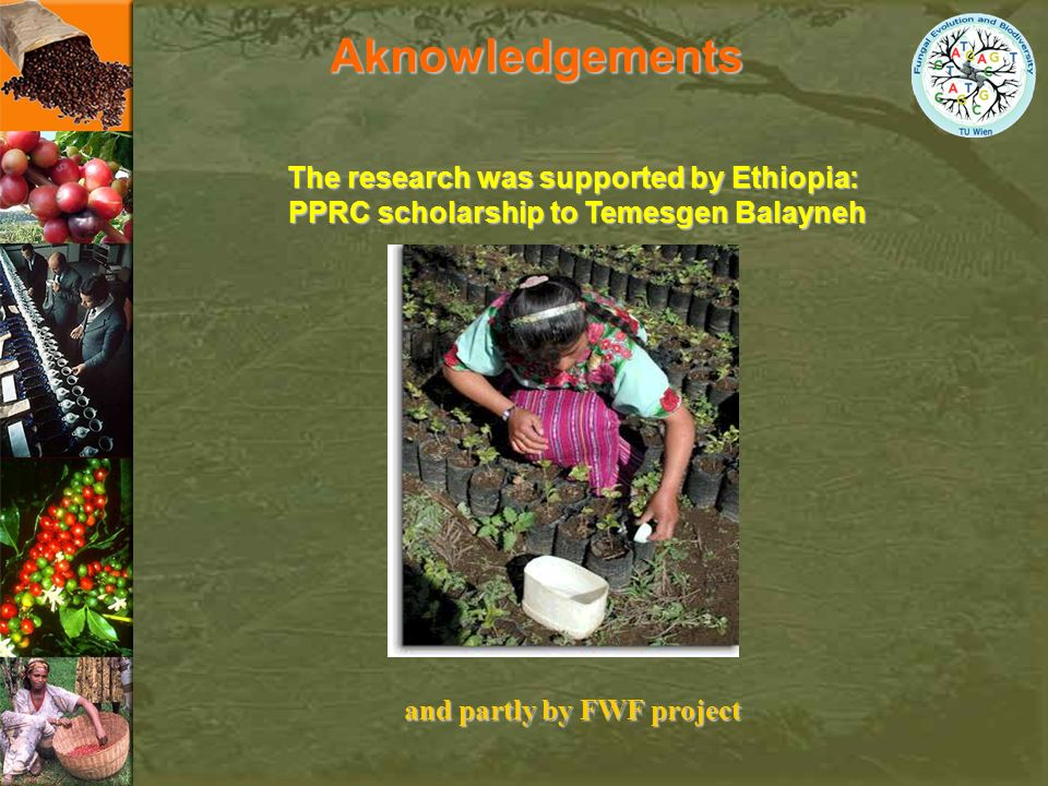Aknowledgements The research was supported by Ethiopia: