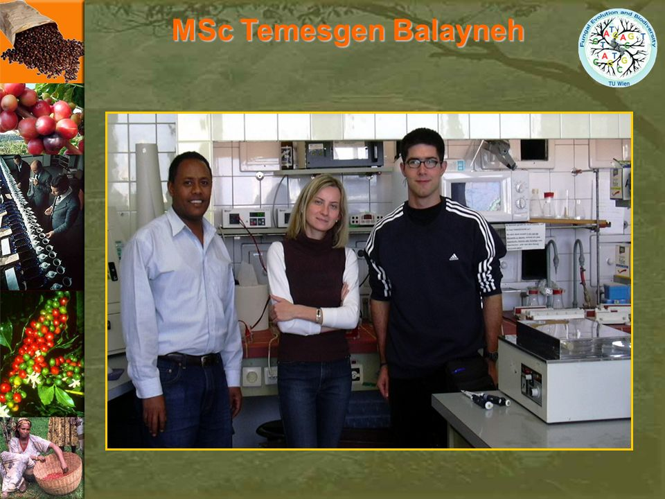 MSc Temesgen Balayneh Let's say few words about our co-worker form Ethiopia.