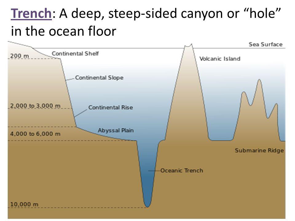 Deep ocean floor diagram images for Ocean floor zones diagram
