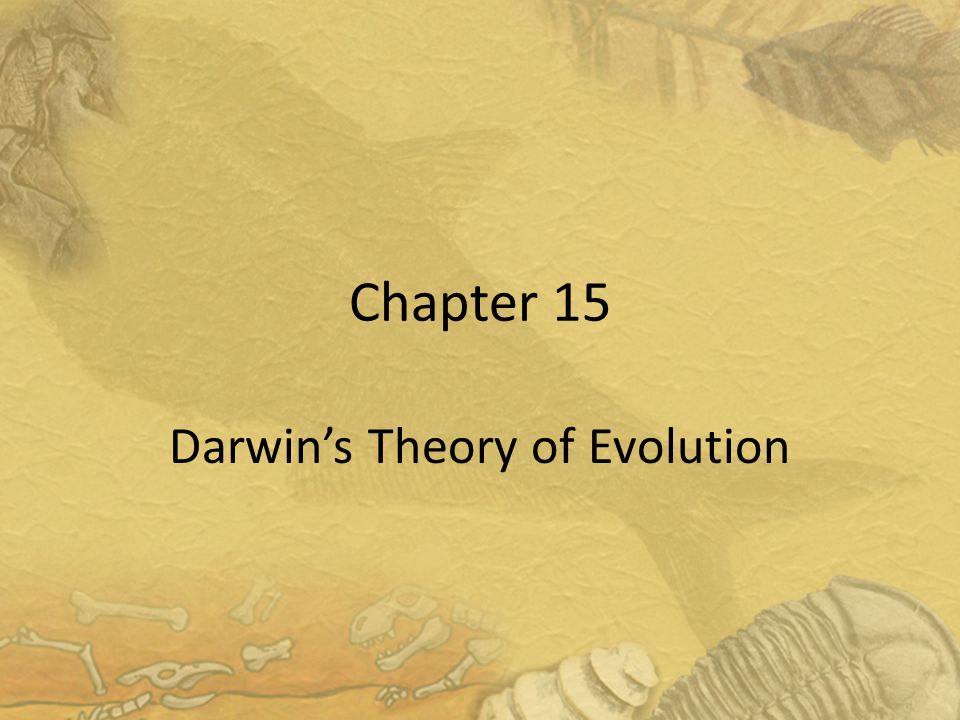 darwin s theory of evolution and The story of charles darwin's life his theory of evolution changed the way we understood our place in the world.