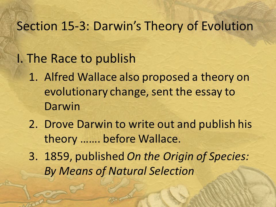 written essays on theory of evolution Evolution as fact and theory research papers examine stephen jay gould's evolution verses creation book have our writers write a book review or research paper that use gould's book as a main reference.