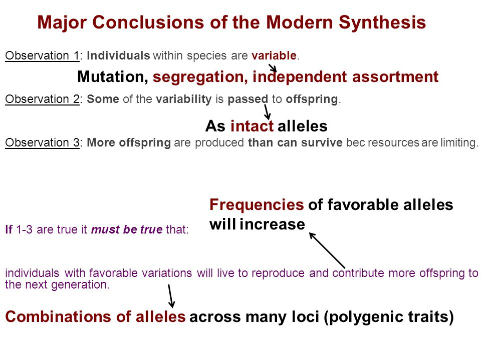 a summary of the modern synthesis theory A summary of modern methods of network synthesis e the basic principles underlying this theory the following very compact summary of the most essential.