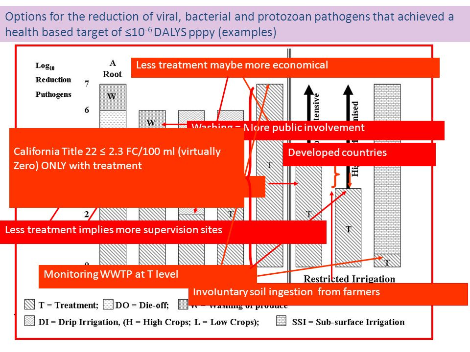 Options for the reduction of viral, bacterial and protozoan pathogens that achieved a health based target of ≤10-6 DALYS pppy (examples)