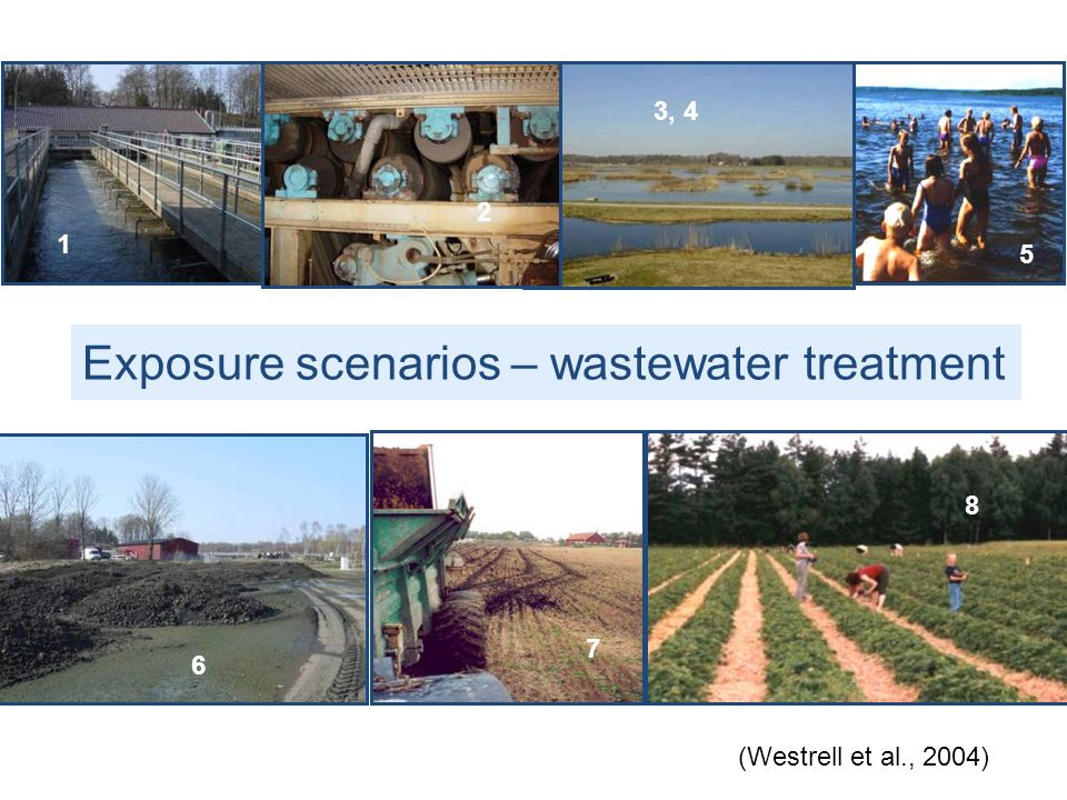Exposure scenarios – wastewater treatment