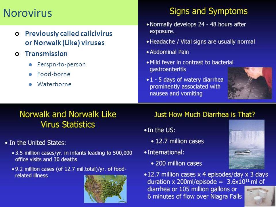 Norovirus Previously called calicivirus or Norwalk (Like) viruses