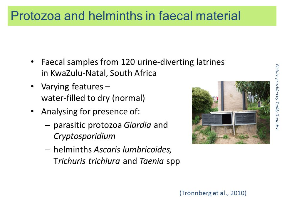 Protozoa and helminths in faecal material