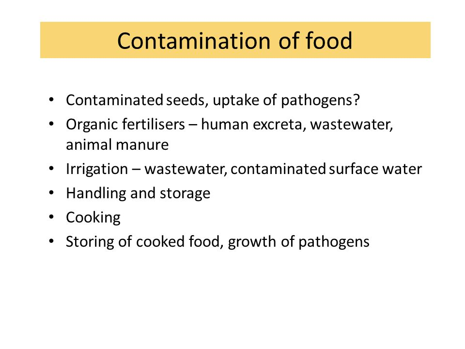 Contamination of food Contaminated seeds, uptake of pathogens