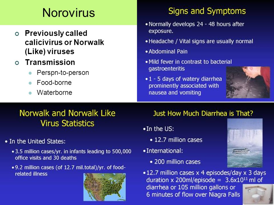 Norovirus Previously called calicivirus or Norwalk (Like) viruses