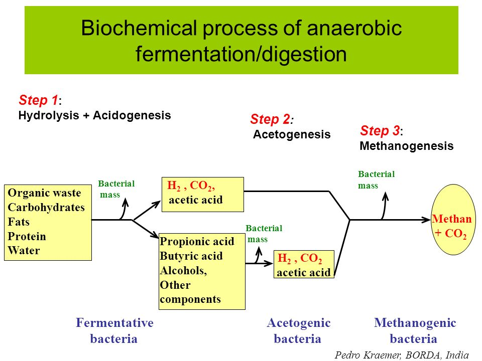 Biochemical process of anaerobic fermentation/digestion