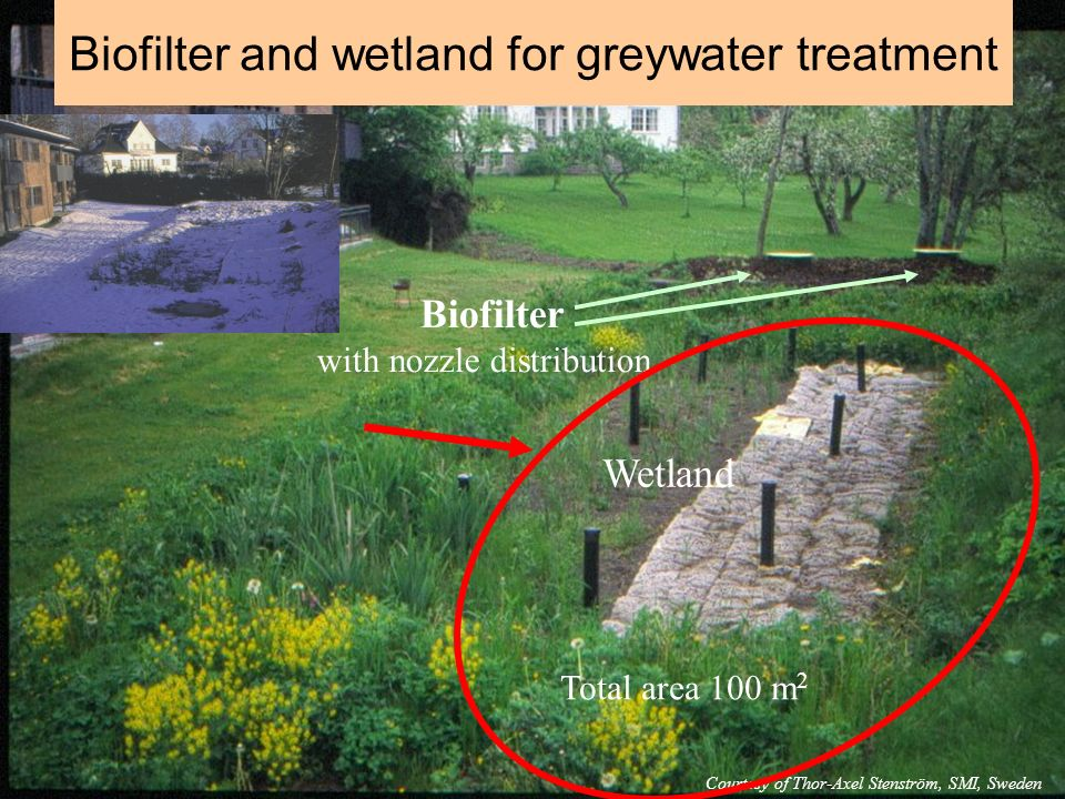 Biofilter and wetland for greywater treatment