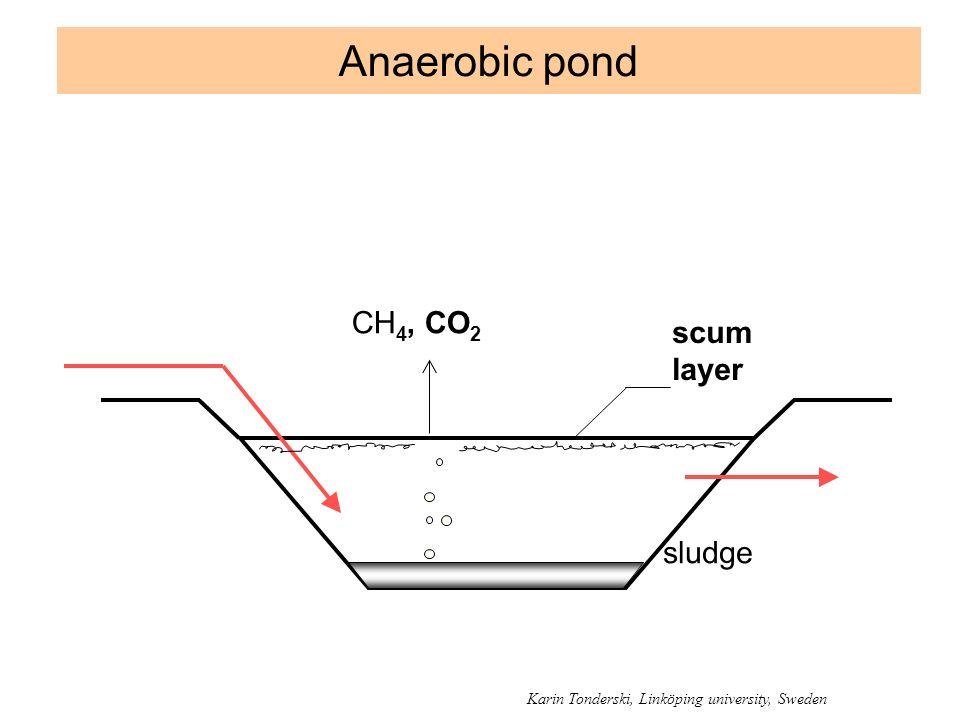 Anaerobic pond CH4, CO2 scum layer sludge