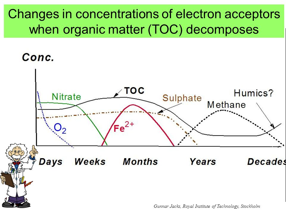 Changes in concentrations of electron acceptors when organic matter (TOC) decomposes