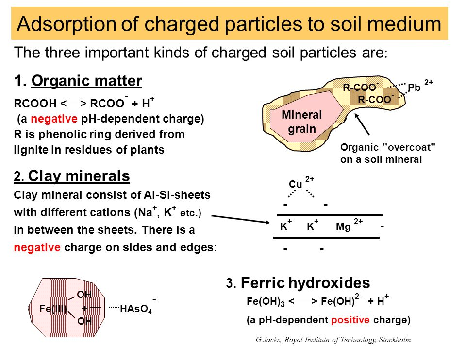 Adsorption of charged particles to soil medium