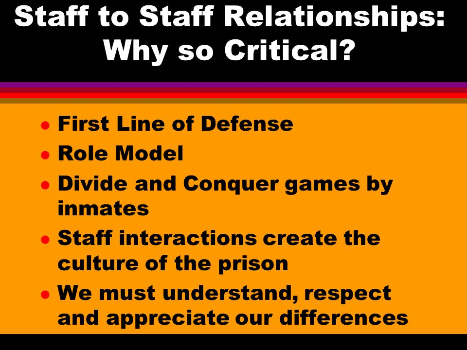 Staff to Staff Relationships: Why so Critical