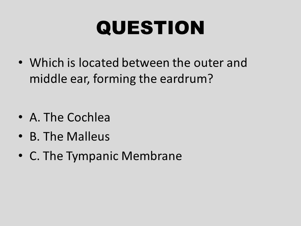 QUESTION Which is located between the outer and middle ear, forming the eardrum A. The Cochlea. B. The Malleus.