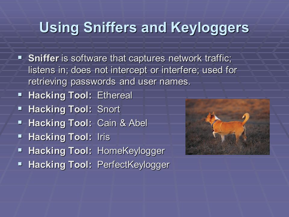 Using Sniffers and Keyloggers
