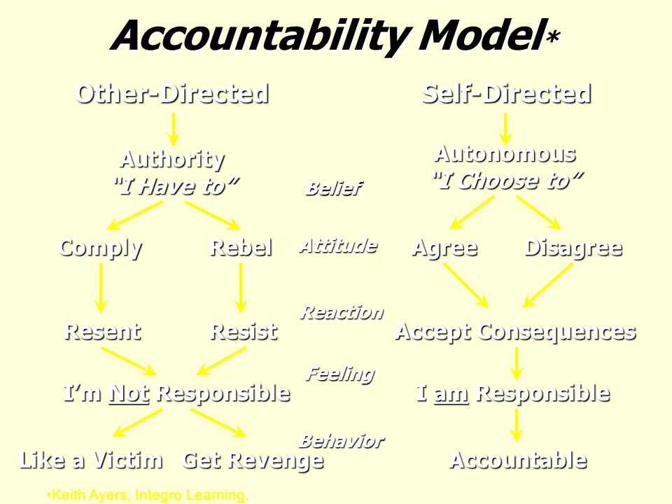 Accountability Model*