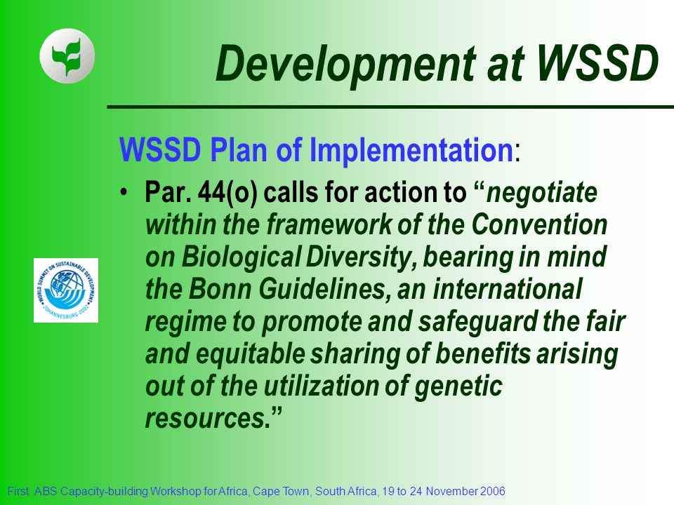 Development at WSSD WSSD Plan of Implementation: