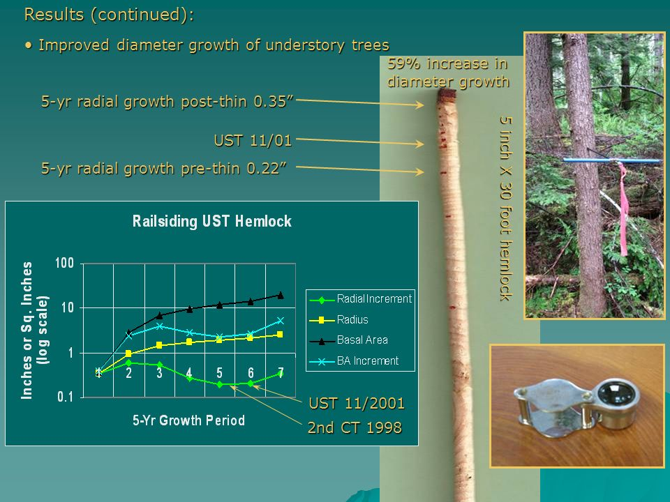 Improved diameter growth of understory trees