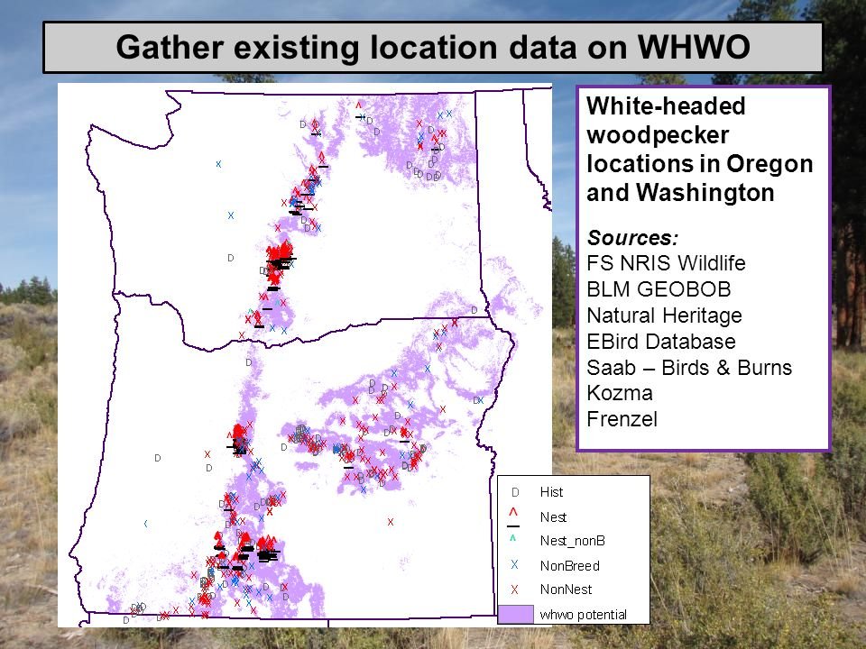 Gather existing location data on WHWO
