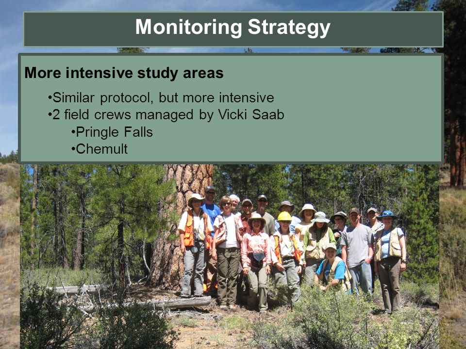 Monitoring Strategy More intensive study areas