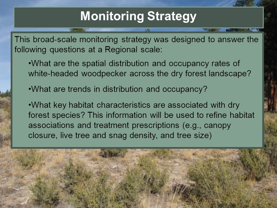 Monitoring Strategy This broad-scale monitoring strategy was designed to answer the following questions at a Regional scale: