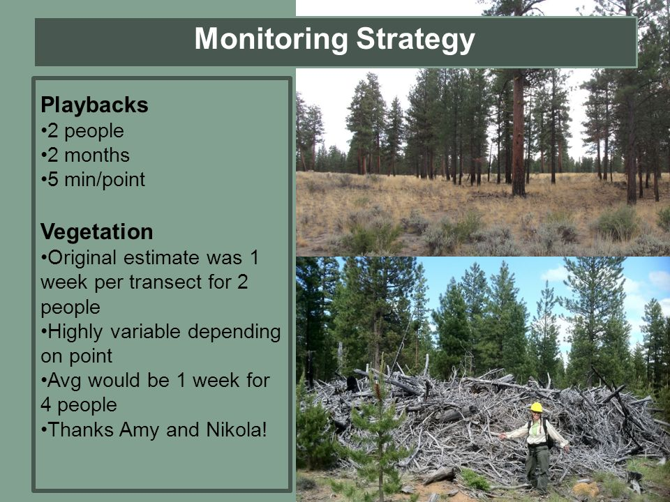 Monitoring Strategy Playbacks Vegetation 2 people 2 months 5 min/point