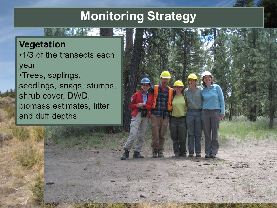 Monitoring Strategy Vegetation 1/3 of the transects each year