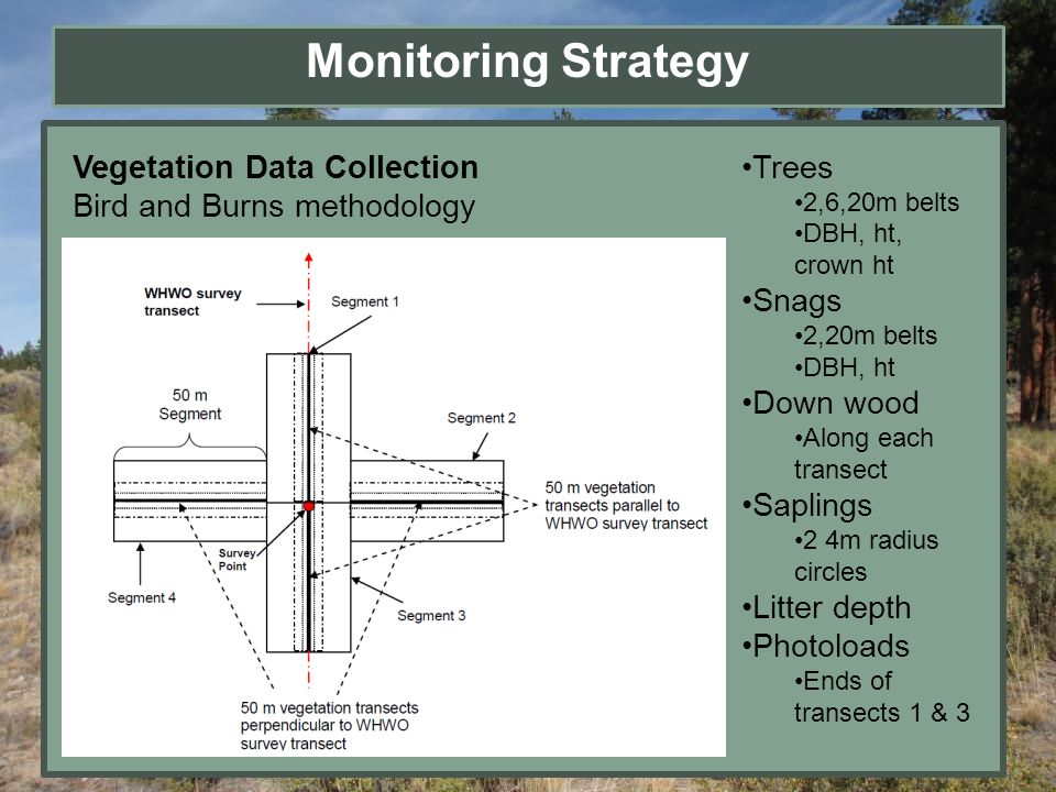 Monitoring Strategy Vegetation Data Collection