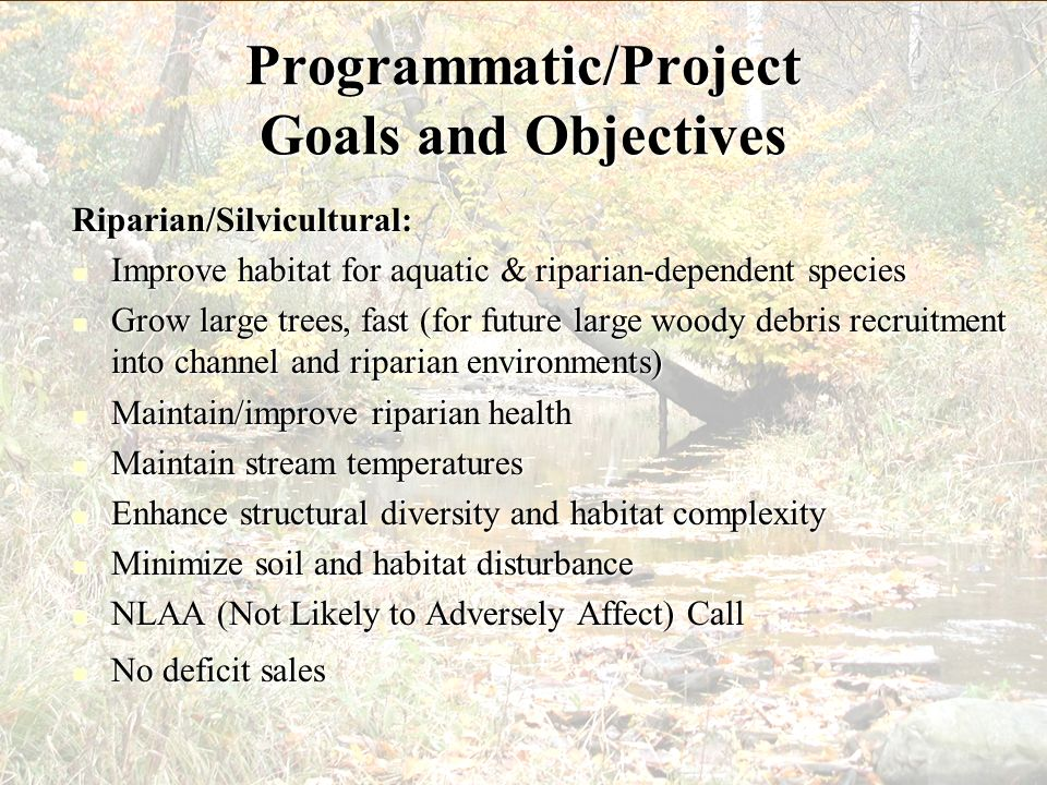 Programmatic/Project Goals and Objectives