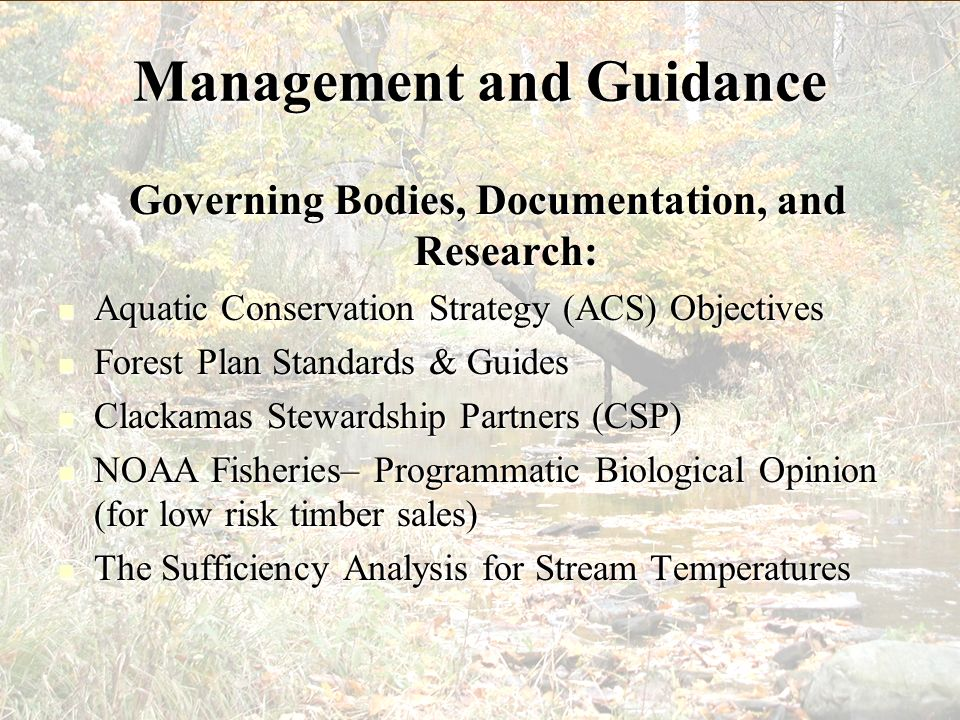 Management and Guidance