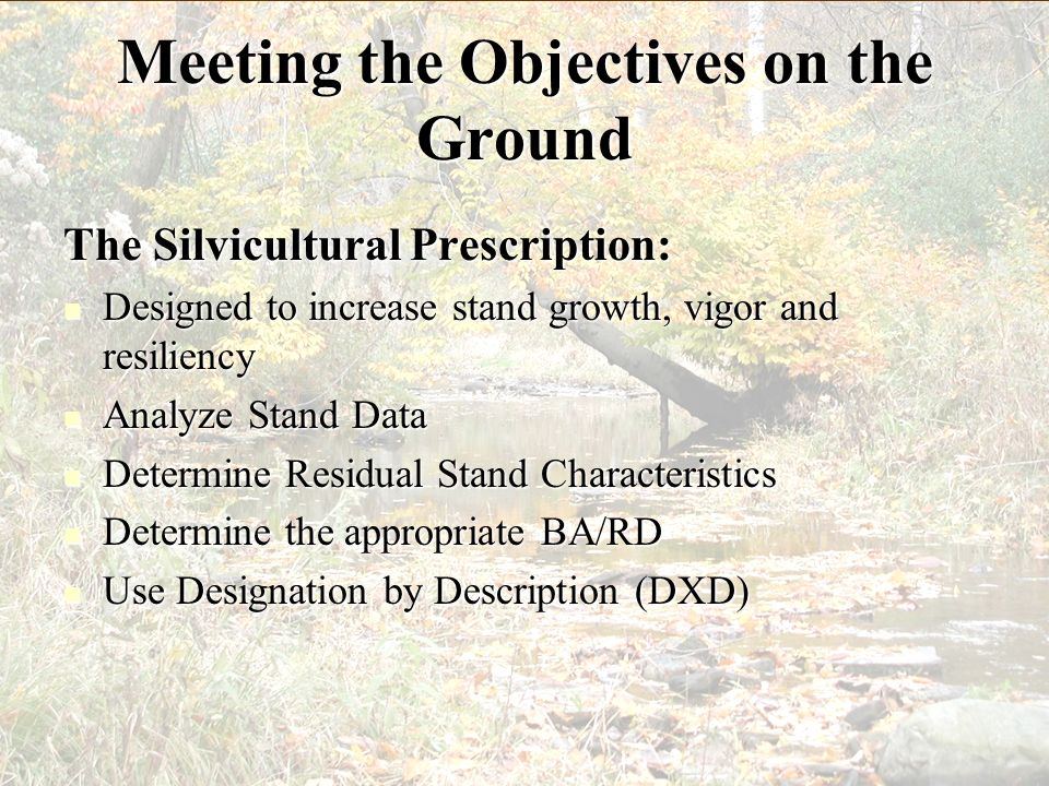 Meeting the Objectives on the Ground
