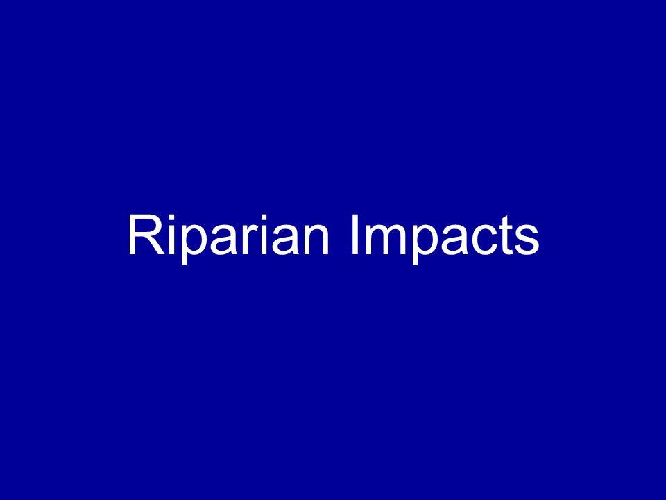 Riparian Impacts