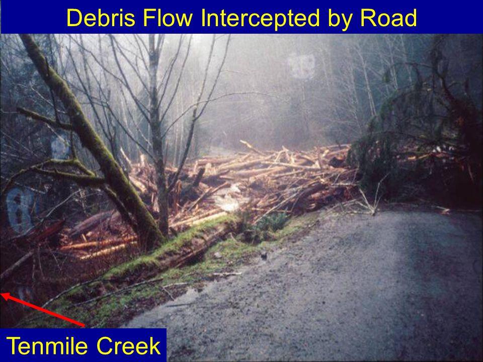 Debris Flow Intercepted by Road