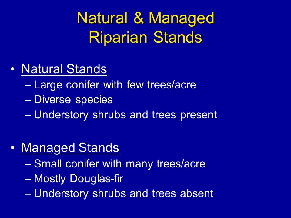 Natural & Managed Riparian Stands