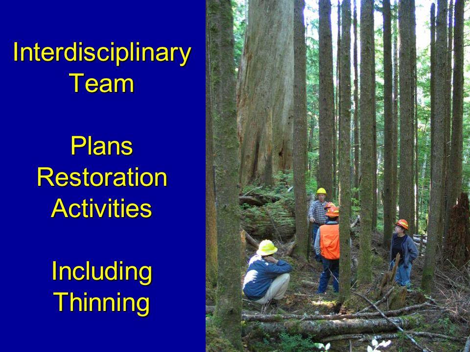 Interdisciplinary Team Plans Restoration Activities Including Thinning