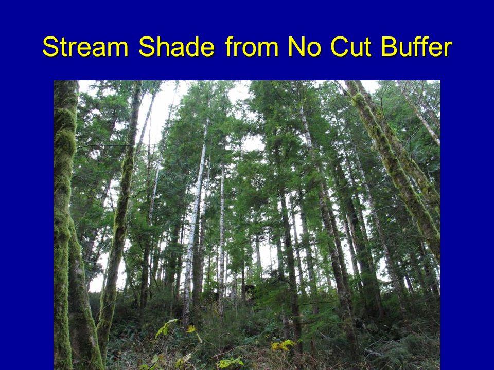 Stream Shade from No Cut Buffer