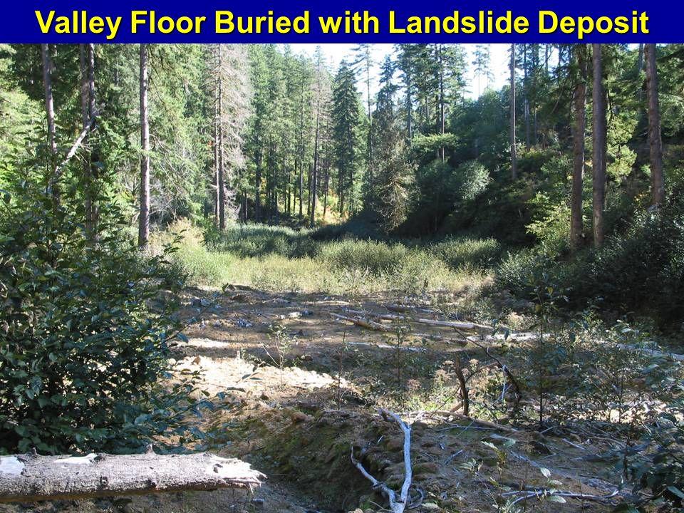 Valley Floor Buried with Landslide Deposit
