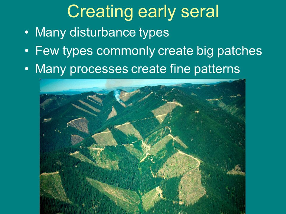 Creating early seral Many disturbance types